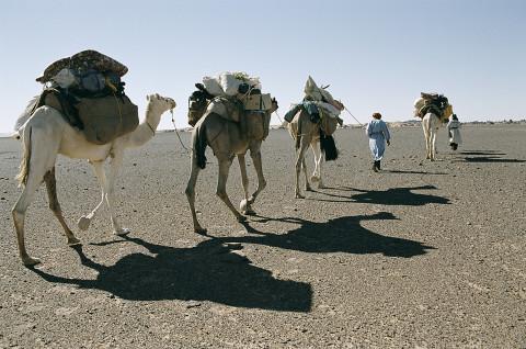 fred bourcier photographe reportage desert libye 23