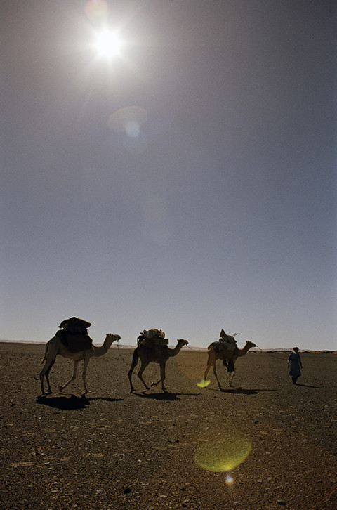 fred bourcier photographe reportage desert libye 24
