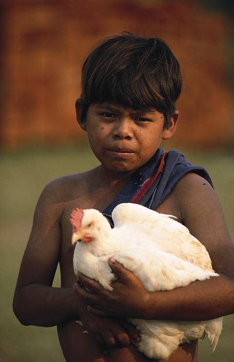 fred bourcier photographe reportage guatemala ixcan enfants