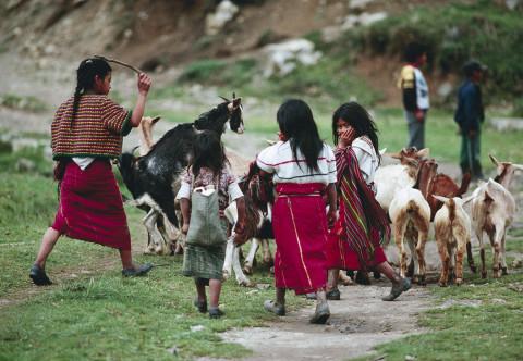fred bourcier photographe reportage guatemala ixil enfants