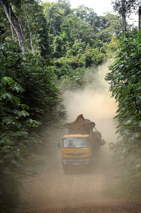 fred bourcier photographe reportage renault trucks ghana transport grumes bois 03