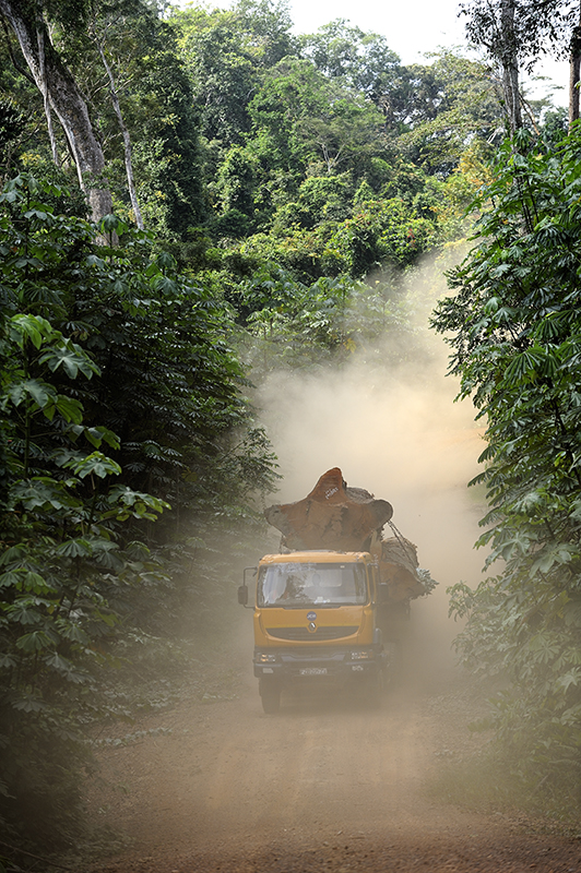 photographe reportage renault trucks ghana transport grumes bois 03 ~ Transport Grumes Bois