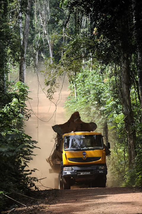 fred bourcier photographe reportage renault trucks ghana transport grumes bois 04