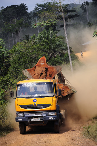 fred bourcier photographe reportage renault trucks ghana transport grumes bois 06