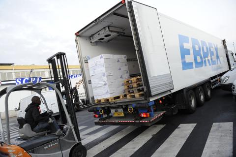 reportage photo fred bourcier au marché de Rungis chargement denrées alimentaires camion Renault trucks