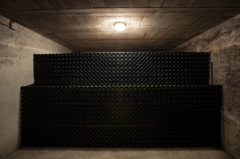 fred-bourcier-photographe-reportage-champagne-legret-travail-vignes-bio-10