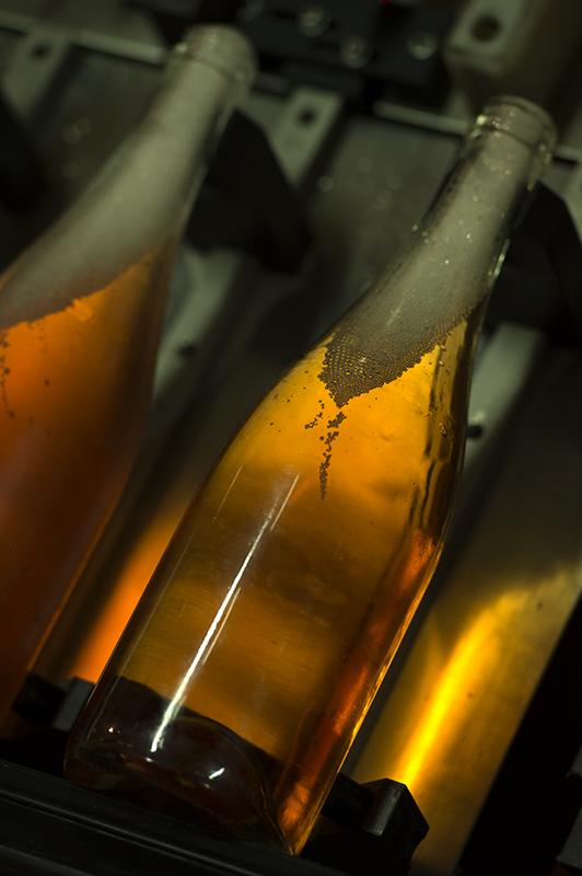 fred-bourcier-photographe-reportage-champagne-legret-travail-vignes-bio-11