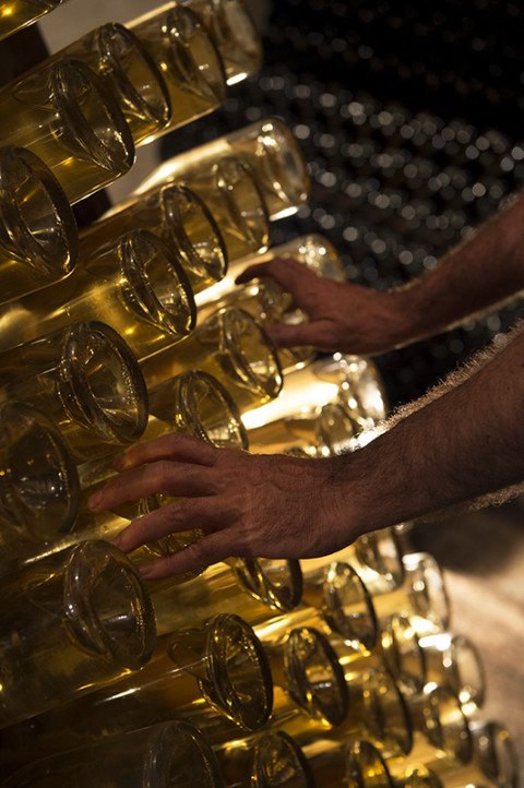 reportage photo dans les caves champagnes Legret par fred bourcier photographe