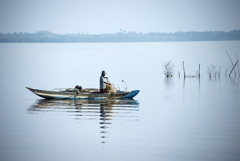 homme penchant avec un filet lagune au Sri Lanka photo fred bourcier