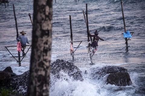 reportage pêcheurs pilotis Sri Lanka mer agitée traditions sri lankaise photographies fred bourcier